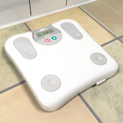3d bathroom scale model