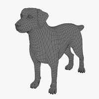 DOG (base mesh)