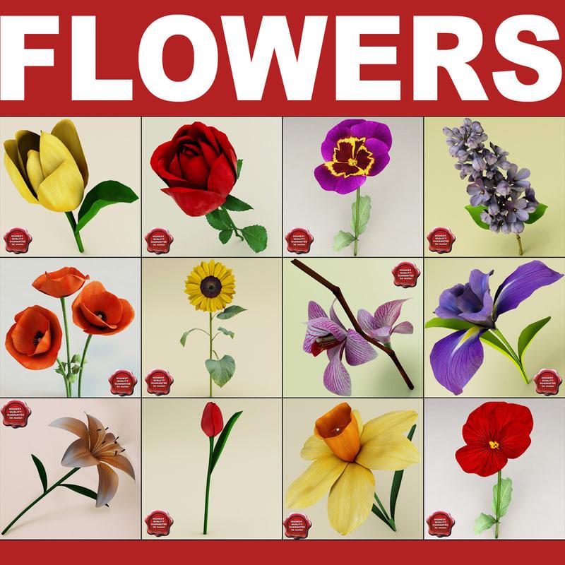 flowers v2 3d 3ds