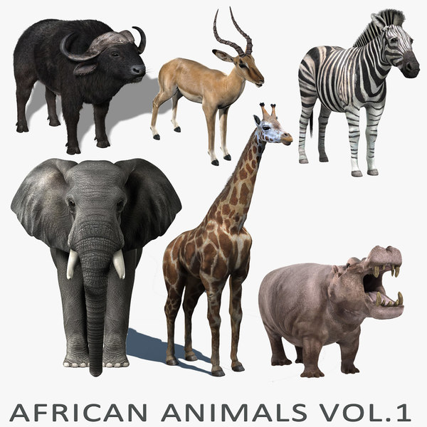 african animals vol 1 3d model