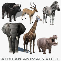 african animals vol 1 3d model