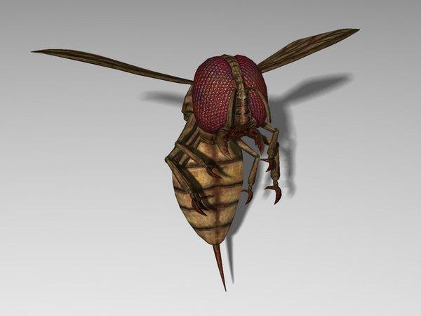 monster wasp 3d model