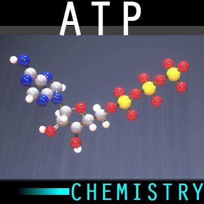 molecule atp 3d model