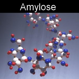 molecule amylose 3d model