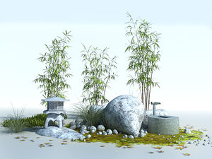 plants - japanese max