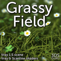 max grassy field grass