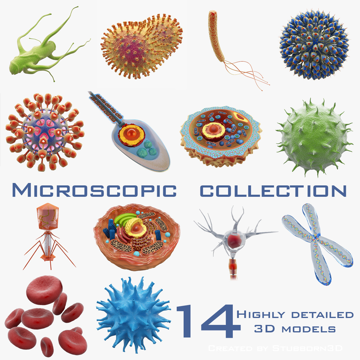 microscopic 3d model