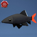 Red-tailed black shark 3D models