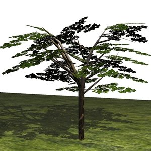 3ds small tree