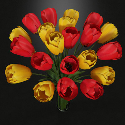 3d red yellow tulips vase model