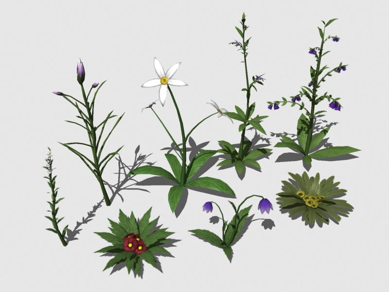 plants games realtime 3d model