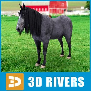 3d model black pony horse