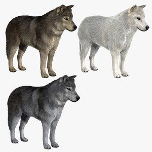 3d wolves v2 wolf model