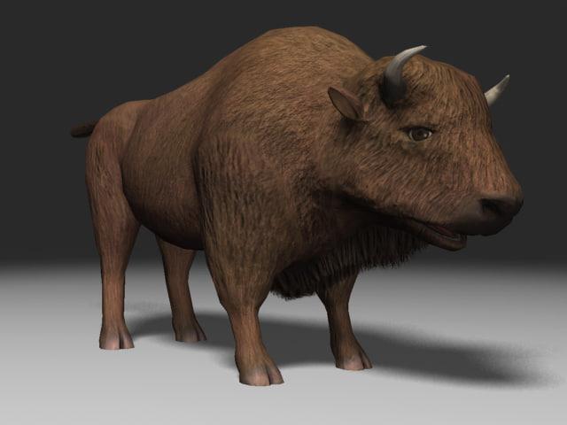 buffalo animation 3ds