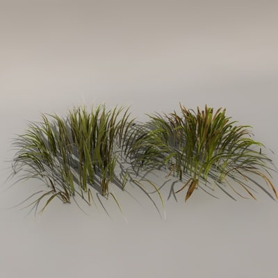 obj bunch grass