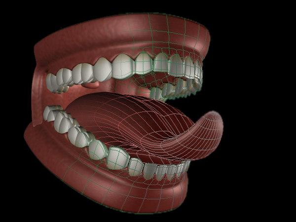 mouth tongue teeth e 3d model