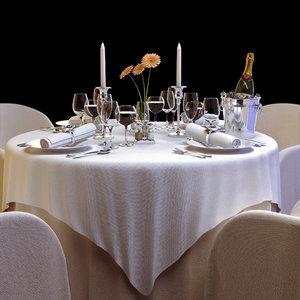 tableware table cloth restaurant 3d model