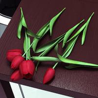 Tulips lie
