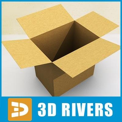 cardboard box x