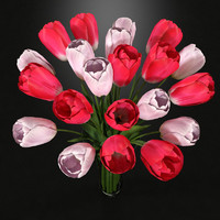 3dsmax tulips vase pink white