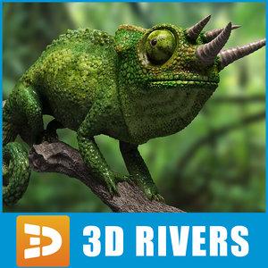 green chameleon lizards max