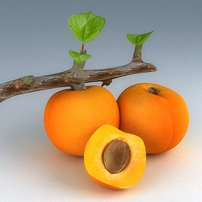 peaches obj