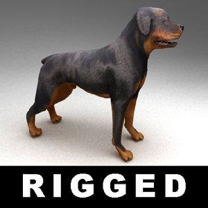 rigged rottweiler 3d model