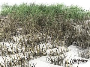 grass spring autumn 3d model
