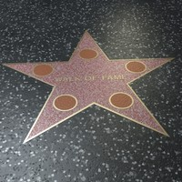 walk fame-star max