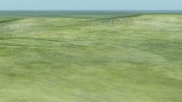 3d grassland terrain