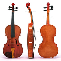 violin strings 3d model