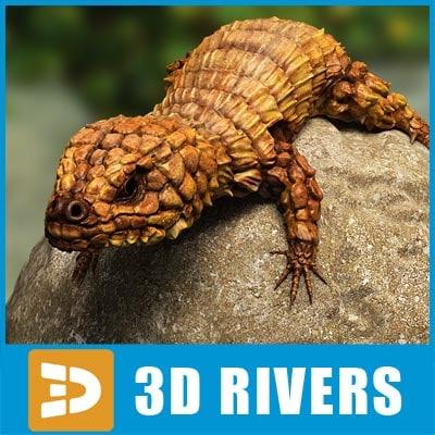 maya armadillo lizard