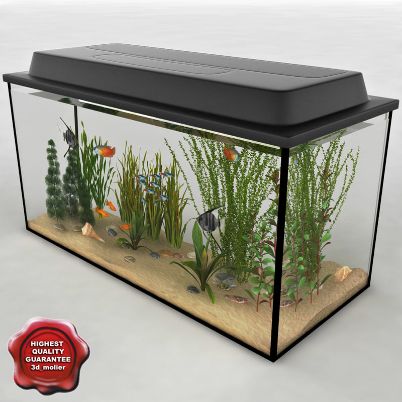 3d aquarium v11 model
