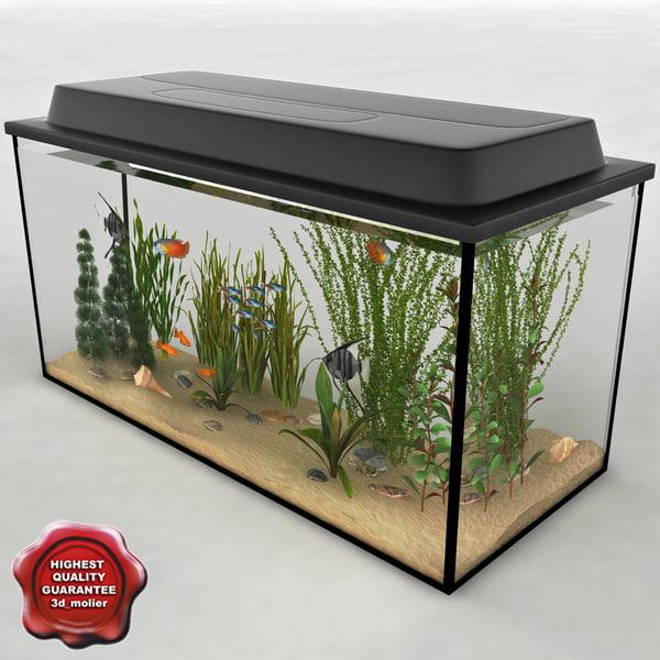 3d aquarium v11 model