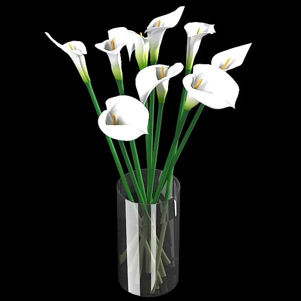 white calla lilies 3d model