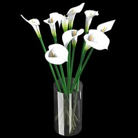 white calla lilies 3d model
