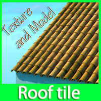 Roof tile with dirty texture and clean texture.