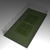 Tennis court grass