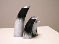 3d model of horn vases