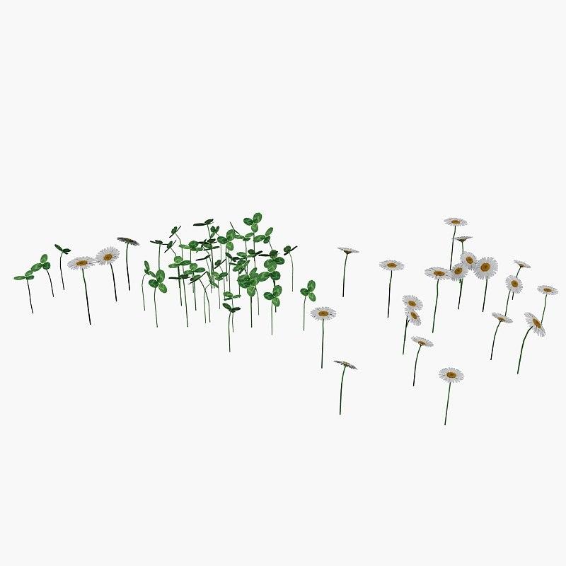 max daisy clover