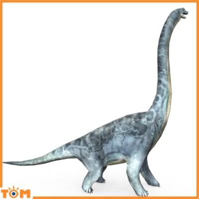 brachiosaurus dinosaur 3d model