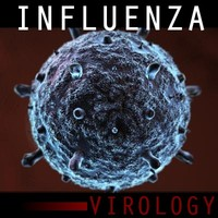3d model influenza virus