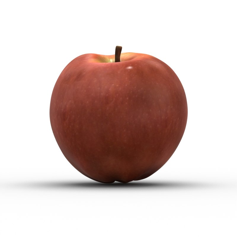 apple modo 501 3d model