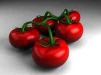 Tomatoes 3D - model+ V-ray materials