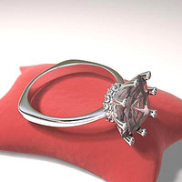 ring earclipce jewelry 3d model