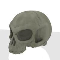 3d human skull hires lowres