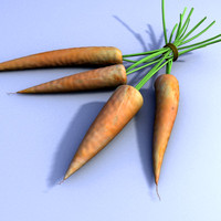 zanahorias carrots 3d model