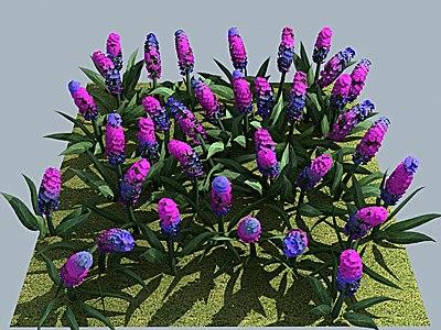 3ds max flower hyacinth