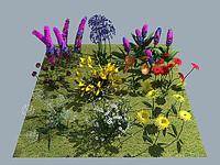 max flower v1 - 10x