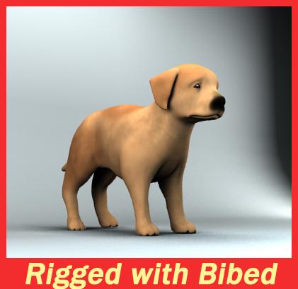 dog puppy 3d model